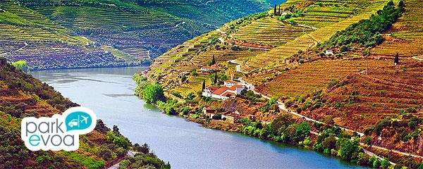 Valle del Douro en Oporto