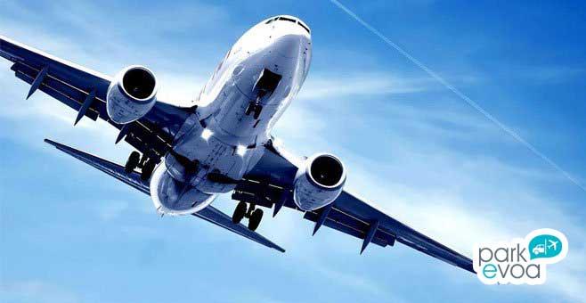 avion vuelo