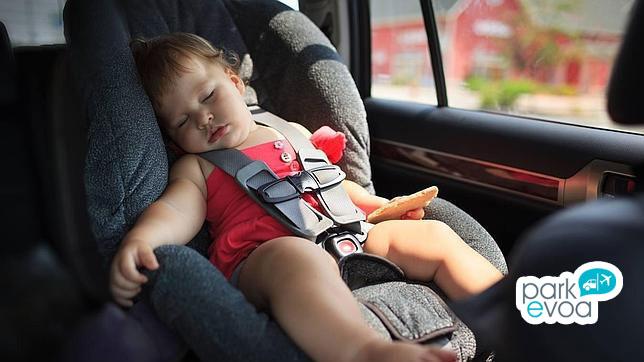 bebe descanso vehiculo