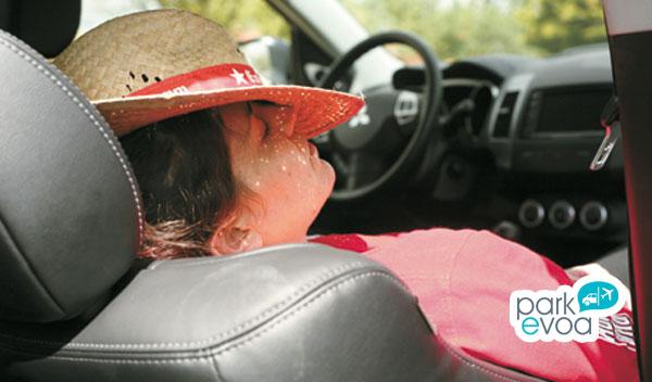 descanso vehiculo fatiga